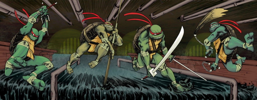 IDW ninja turtles comic books